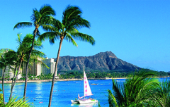 Hawaii Cruises